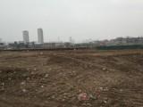 武汉新洲双柳出售100亩国有指标工业土地 周边工厂密集
