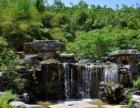 《翊龍水族》宁波承接假山鱼池,景观园林工程