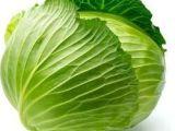产地大量批发直供绿色无公害菜蔬菜 种植基地直销新鲜椰菜