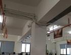 温州独立网站建设 苍南县企业官网 百度首页优化