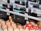 华肯鸡蛋喷码机的应用