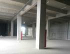 省道337禄口边上全新产业园一楼厂房出租2500