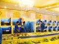 观赏鱼缸、水族箱、定制观景、假山、喷泉、冷库