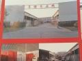 东北塘 农新河路导诺木业城 仓库 和空地300平方