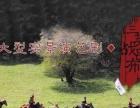 西安中旅咸阳化纤路皇家牧场大水川观三英战吕布一日游