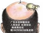 南宁学习植发,贵港毛发种植培训,平南头发移植培训