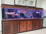 上海魚缸魚池維護