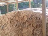 优质湖南本地盐湿牛皮 厂家经销 收购农家家养优质牛皮