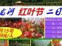五龙河红叶节精品二日游