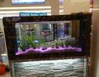 全新鱼缸上市乐天阳阳生态鱼缸
