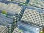 四川省哪里有古钱币交易中心