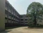 黄江镇社贝村一楼厂房2000平米招租