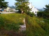 从化江埔双凤高速出口附近省道边100平方宅基地转让