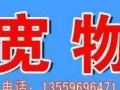 漳州物流,漳州物流公司,漳州货运专线