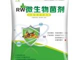 生物有机肥功能菌各种菌剂生产厂家鹤壁人元生物
