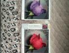 滴水玫瑰十字绣