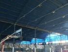 青山青少年宫附近篮球培训