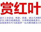 北京平谷金海湖赏红叶一日游 团队去金海湖旅游价格