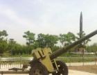 展示品恐龙模型大型军事展品租赁