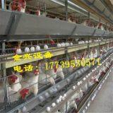 鸡笼厂家直销自动化养鸡设备高性价比厂家供应