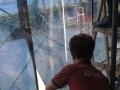 乌鲁木齐建筑玻璃贴膜