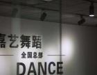 西北较专业的舞蹈培训机构~西安嘉艺舞蹈