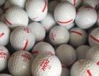 高尔夫球全新日本鬼的货