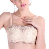 Y8209超聚拢调整型性感防走光美胸女士抹胸内衣文胸代理一件代发