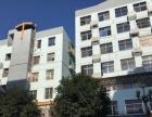 连江816北路 国惠酒店附近 3室2厅 家电齐全