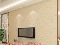 信阳墙艺漆加盟/信阳硅藻泥3D彩粒漆加盟项目/彩粒