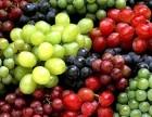 好消息好消息,做拓展活动每人送葡萄2斤啦