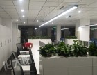 重庆新办公室除甲醛化大阳光专业办公除醛