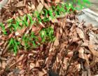 邢台废电缆回收废铜烂铁回收废旧电缆高价回收