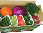 蔬菜配送优选 康来富 蔬菜瓜果,鲜肉等食材配送