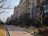 丝绸厂家属30万 1楼带院 65平 两证全 适合老人住海滨政府新村