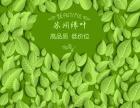 怎么代理苏州绿叶产品 绿叶是什么公司