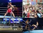 上海大型活动摄影摄像 网络直播 照片直播