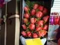 大庆市七夕鲜花实体店同城送花支持淘宝和微信下单