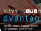 上海高端网站建设、企业量身定制、微信开发设计