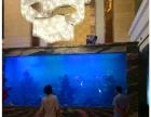 昆山鱼缸定做别墅 酒店大堂 主题公园 鲨鱼缸 5米玻璃水族箱