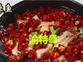 欧盟品质傲椒酸菜小鱼专供南昌