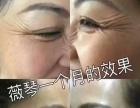 【金士力美力系统薇琴】加盟官网/加盟费用/项目详情