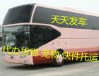图 颍上到苏州客车132-1867-6688长途汽车