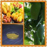 芒果叶提取物 芒果苷