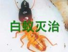 长安白蚁防治中心 道滘防治白蚁所 望牛墩白蚁防治所,资质认证
