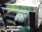 龟缸带晒台水龟苗缸带背滤别墅鱼缸