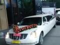 万州凯迪租车,婚庆用车,旅游商务租车