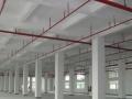 z石岩原房东1楼2800平米带装修不要转让厂房仓库