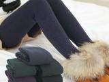 420-450克七彩棉打底裤 超柔顺羊羔绒外层七彩棉 一体保暖裤