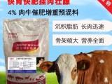 育肥牛饲料怎么选择?育肥牛专用预混料-肥牛王